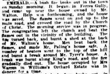 MANY BUSH FIRES. (1926, February 1).The Argus (Melbourne, Vic. : 1848 - 1957), p. 11. Retrieved January 14, 2016, from http://nla.gov.au/nla.news-article3732268